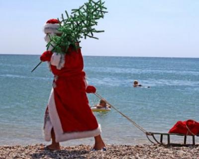 Крым и Севастополь на Новый год ждут гостей и готовятся