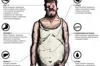 Как крепкий алкоголь влияет на организм человека