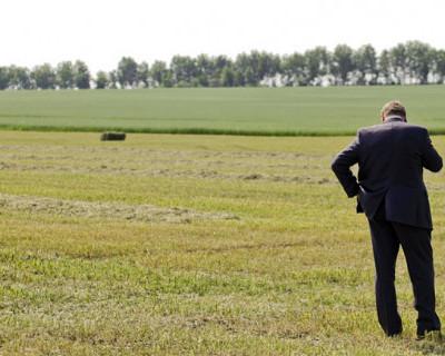 Кто в Крыму может бесплатно получить земельный участок