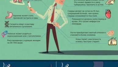 Как на организм человека влияет курение
