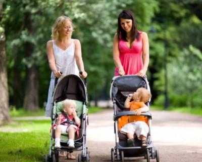 Для чего нужен пропускной билет в организацию «Севастопольские мамы»? (ВИДЕО)