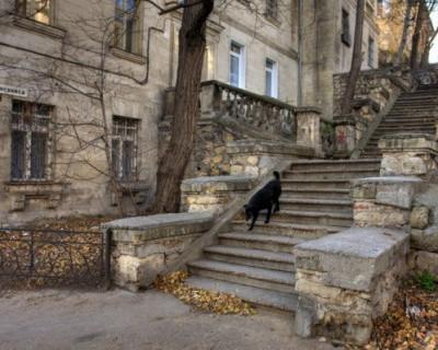 В Севастополе сорваны сроки ремонта лестниц и подпорных стен (ФОТО)