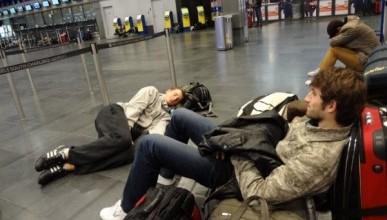 В московских аэропортах разрешили мыться и ездить верхом на животных