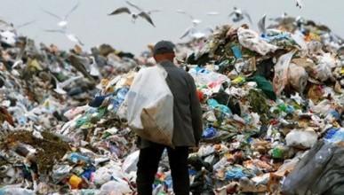 Хозяйственники утверждают, что в Севастополе низкий тариф на вывоз мусора
