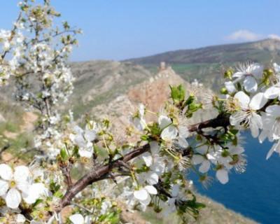 Крым может побить 70-летний рекорд