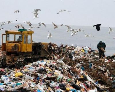 Кто зарабатывает на мусоре в Крыму?