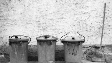 Названо количество севастопольцев, которые примут участие в месячнике чистоты