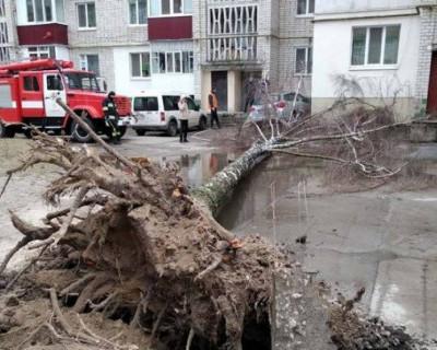 Из-за урагана на Украине продолжают гибнуть люди (ВИДЕО)
