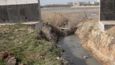 В Крыму лечебное озеро годами наполнялось нечистотами