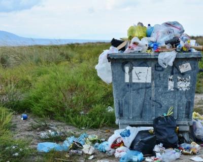 Крым нуждается в закупке контейнеров для мусора