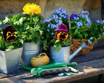 Как жить садоводам Севастополя по новому закону?