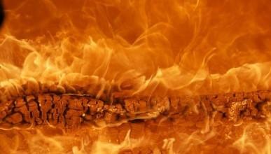 Названо число пожаров, которые произошли в Севастополе в течение недели