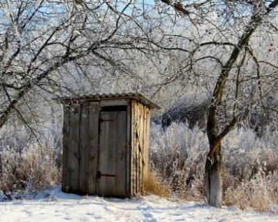 Куда россияне ходят в туалет