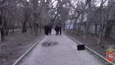 В Крыму арестовали копавшуюся в земле девушку