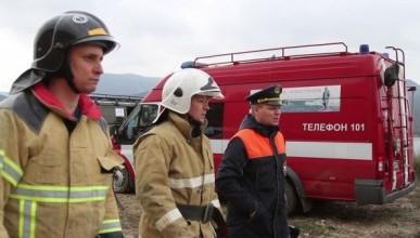 В Севастополе ликвидировали крупный лесной пожар. Пятерым потребовалась госпитализация