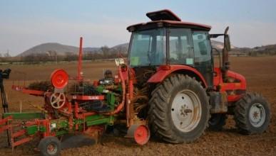 «Золотая Балка» в 2019 году посадит 180 га новых виноградников (ФОТО)