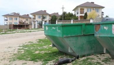 В Севастополе дельфинов выбрасывают в мусорные контейнеры, как объедки (ФОТО)