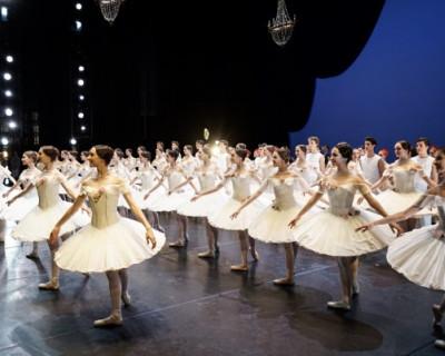 Уже в этом году состоится первый набор в Академию хореографии