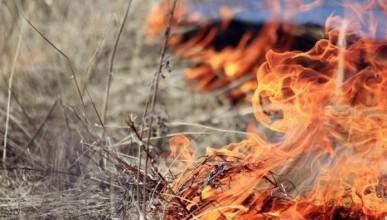 Внимание! 11 апреля в Севастополе начался пожароопасный сезон