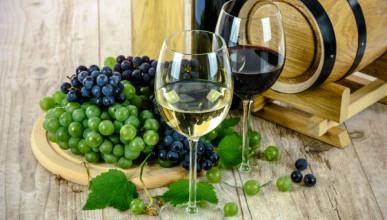 Дмитрий Белик поддержал крымских виноделов