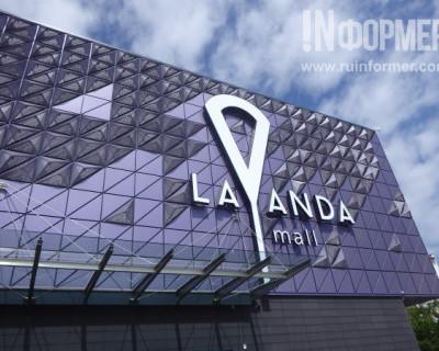 В Севастополе открылась «Лаванда» (ФОТО, ВИДЕО)