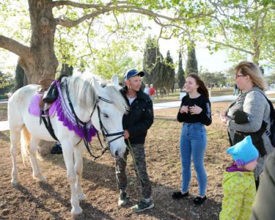 Кто изгонит лошадников из Парка Победы?