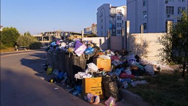 В Севастополе растут новые мусорные свалки