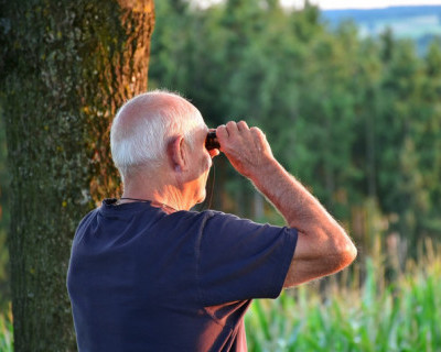 Как выжить российскому пенсионеру?