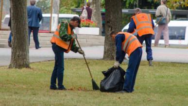 Идём на рекорд? В Севастополе выкосят всю траву, а очистка урн в центре города будет производиться до 10 раз в день!