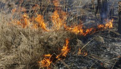 Пожар на Северной стороне Севастополя