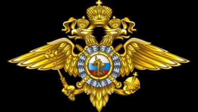 Владимир Путин уволил двух генералов МВД за дело журналиста Ивана Голунова
