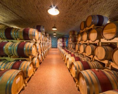 Правительство России хочет поддержать отечественных виноделов