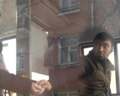 В Севастополе дешевле! Сколько стоит проезд в маршрутках других городов России?