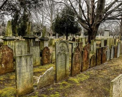 Правительство Севастополя поддержит восстановление британского кладбища