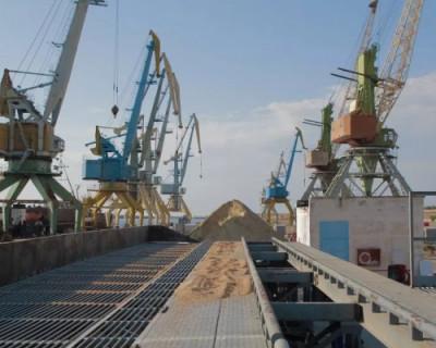 В Севастополе могут появиться зерновой хаб и центр рыбопереработки