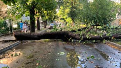 МЧС объявило в Симферополе штормовое предупреждение