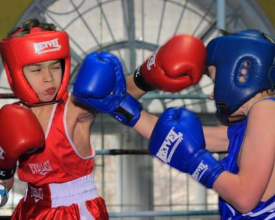 Праздник детского бокса в Севастополе (фото)