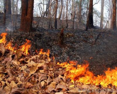 Состояние пожарной безопасности в Севастополе находится под строжайшим контролем