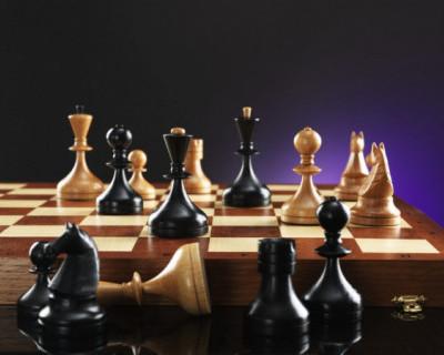 Шахматы станут обязательным предметом для российских школьников