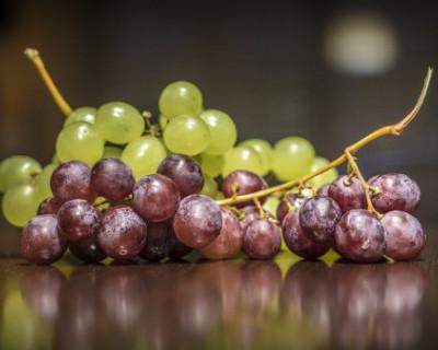 Крымские виноделы бьют тревогу