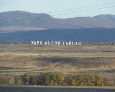 Севастопольский суд постановил демонтировать «Парк львов Тайган»