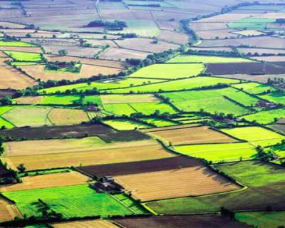 Севастопольцы предпочитают оформлять право собственности на землю без Севреестра