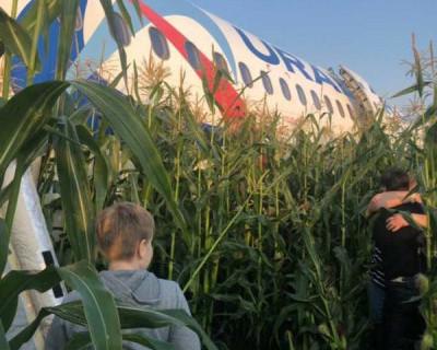 Самолет, летевший в Симферополь, совершил жесткую посадку в поле (ВИДЕО)