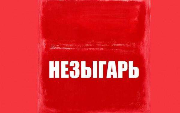 НЕЗЫГАРЬ: «В администрации президента РФ идёт широкая дискуссия по ...