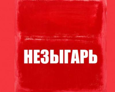НЕЗЫГАРЬ: «В администрации президента РФ идёт широкая дискуссия по поводу партийной реформы в стране»