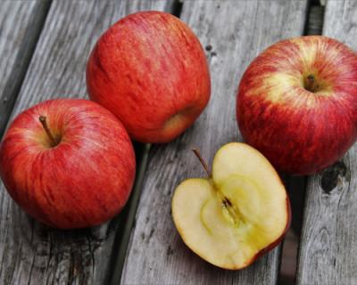 В Крыму возродят выращивание любимых яблок российского императора
