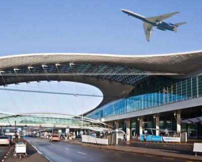 Московская полиция задержала в аэропорту пьяных авиапассажирок
