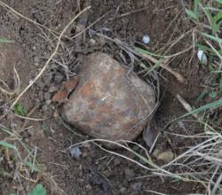 В Севастополе обнаружили немецкую мину