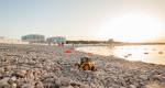 Хит сезона: как прошло лето на одном из лучших пляжей Севастополя «Адмиральская лагуна»
