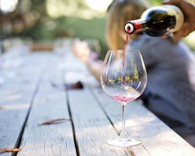 Программа фестиваля WineFest-2019: от ярких развлечений до серьезных дискуссий